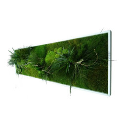 flowerboxnature - Pano XL Nature Frame - This Extra Large Panoramic Nature Frame will give you a different option to meet the art on your walls. The various plants used in the Nature Frames are 100% natural and biodegradable. Use various shapes and sizes to create a modern salon wall or hang a single piece to add a wall garden to any space for many years to enjoy.