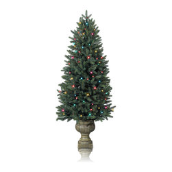 "Balsam Hill - Balsam Hill® Colorado Spruce Potted Pre-Lit Artificial Christmas Tree - Our Colorado Spruce Potted artificial Christmas tree two-pack contains potted versions of the spruce trees commonly found throughout the Rockies. These 4 feet to 7 feet pre-lit easy setup trees will sparkle and dazzle with their Clear warm glow lights. Also included with both trees are two durable potted bases, soft cotton gloves for shaping the tree, storage bag, and extra bulbs and fuses. As the best artificial Christmas tree manufacturer that is the #1 choice for set designers for TV shows such as ""Ellen"" and ""The Today Show"", in addition to being a recipient of the Good Housekeeping Seal of Approval, these trees are backed by our 60-day clearance warranty on clearance products. Free shipping when you buy today!"