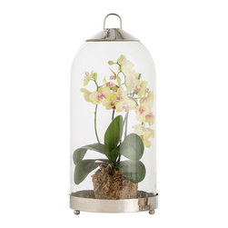 Hewitt Small Cloche - Closed glass cloches are familiar parts of the vintage-inspired tables cape, but the small opening in the crown of this striking accessory admits air and moisture, so it's perfect as an alternative to a hurricane lantern for holding a pillar candle - or as a terrarium for air plants or ferns. The Hewitt Small Cloche is made from glass practically accented with stainless steel.