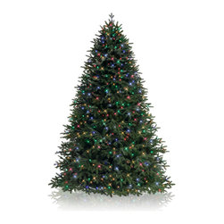 Balsam Hill - 5.5' BH Fraser Fir Artificial Christmas Tree - LED Multi Easy Plug - Majestic and elegant, the 5.5 feet BH Fraser Fir showcases real-looking green foliage with silver undertones. Draped with LED multi-colored lights, this artificial Christmas tree instantly brightens up rooms with its gorgeous design. Balsam Hill�s mission is to create the world�s most beautiful and realistic artificial Christmas trees.� We are committed to providing our customers with a picture-perfect holiday.� With innovations like hinged branches and options like remote-controlled pre-strung lights, our luxurious trees will let you sit back and enjoy Christmas to the fullest, this year and for years to come.� Our trees are designed using branches from real trees, and our exclusive True Needle technology creates the most realistic looking and feeling branch tips.� You and your guests may not believe that your gorgeous Balsam Hill Christmas tree is artificial. Balsam Hill�s trees have won awards for their realism and have been featured in movies, television shows, and celebrity homes.� Our wide range of styles and sizes ensures you will be able to find a tree that fits perfectly in your home.� We also have a range of beautiful wreaths and garlands to put the finishing touches on your home this holiday season.