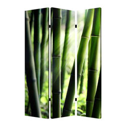 Bamboo Screen - Invite the natural beauty of bamboo to enliven your decor while carving out a sense of intimacy. This three-panel, dual-image canvas screen is a smart and stylish solution for any open indoor space.