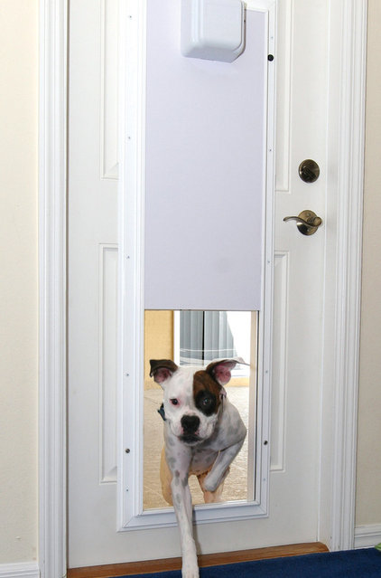 Pet Care Electronic Pet Door With One-Touch Programming
