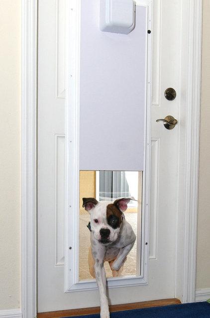 Pet Doors Electronic Pet Door With One-Touch Programming