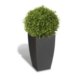 Algreen Madison Planter - Sleek and contemporary, the Algreen Madison Planter has a large 49 gallon capacity so it's sure to make a big impact wherever you place it. Constructed of roto molded plastic, this planter won't chip, crack, or fade and it has an authentic stone texture on the exterior for a realistic look. The removable planter insert has drainage holes and fits into the top of this planter.About AlgreenAlgreen manufactures and distributes high-quality, stylish garden products which promote sustainable lifestyles in the backyard. Their products work to recreate natural habitats, conserve natural resources, and help those who use their products spend more time with family.