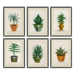 Soicher-Marin - Small Planters, Set of 6 - Silver distressed wood frame with off white mat.  Includes glass, eyes and wire. Made in the USA. Wipe down with damp cloth