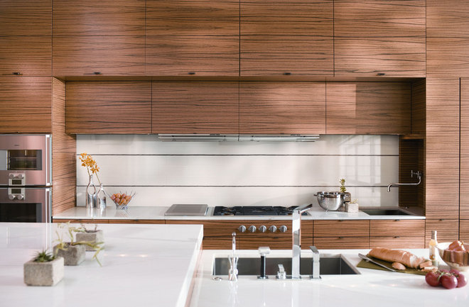 Contemporary  Kitchen Tile Trends Photography - Coverings Preview