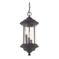 Dolan Designs Lighting - Hanging Outdoor Pendant - 919-50 - This outdoor pendant provides an elegant touch to decor with seedy glass and a black finish. The candelabra lights twinkle through the transparent glass for an old-fashioned look perfect for an exterior entryway as it is rated for damp locations. Includes six feet of chain. Takes (3) 60-watt incandescent torpedo bulb(s). Bulb(s) sold separately. UL listed. Dry location rated.