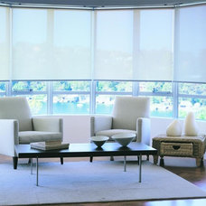 Contemporary Roller Shades by Amazing Window Fashions