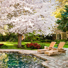 Traditional Pool by David Eichler Photography