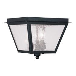 Livex Lighting - Livex Lighting 2549-04 Amwell Ceiling Light Black - -Finish: Black
