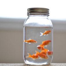Meadow Barn / @Alyssa Peters idea for your next fish