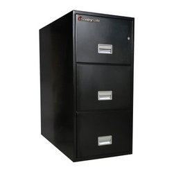 SentrySafe T3110 Insulated 3 Drawer Letter Vertical Filing Cabinet - 31 Inch - Not with the ...