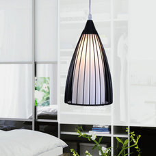 Contemporary Pendant Lighting by Steve Wong