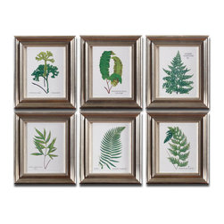 Uttermost - Uttermost Ferns 6 Framed Panels w/ Black & Brown Frames - 6 Framed Panels w/ Black & Brown Frames belongs to Ferns Collection by Uttermost Prints are accented by frames with a champagne silver leaf base, brown and black wash and gray glaze. Prints are under glass. Panel (6)
