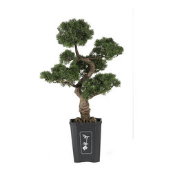 "Nearly Natural - Nearly Natural Cedar Bonsai 36"" Silk Plant - This mesmerizing three foot tall Cedar bonsai makes a wonderful addition to any home, office, or business decor Experience the beautifully handcrafted artwork of an authentic looking tree without all the effort. With lush green leaves and a highly detailed trunk, this tree is sure to leave a lasting impression on guests."