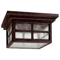 Modern Ceiling Lighting by Elite Fixtures