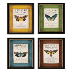 Paragon - Botanical Butterfly PK/4 - Framed Art - Each product is custom made upon order so there might be small variations from the picture displayed. No two pieces are exactly alike.