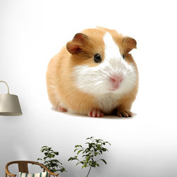 Wallmonkeys Wall Decals - Guinea Pig over White Wall Decal - 18 Inches W x 12 Inches H, 72-Inch X 48-Inch - Easy to apply - simply peel and stick!