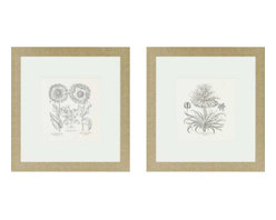 Paragon - Tordilion/Corona Framed Art, Set of 2 - Each product is custom made upon order so there might be small variations from the picture displayed. No two pieces are exactly alike.