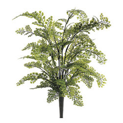 Silk Plants Direct - Silk Plants Direct Large Maidenhair Fern Bush (Pack of 12) - Silk Plants Direct specializes in manufacturing, design and supply of the most life-like, premium quality artificial plants, trees, flowers, arrangements, topiaries and containers for home, office and commercial use. Our Large Maidenhair Fern Bush includes the following: