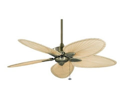 """Fanimation - Fanimation FP7500 Windpointe 52"""" 5 Blade Ceiling Fan - Blades Included - Included Components:"""