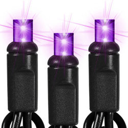 50 Light - LED - 25 ft. String - Purple - Wide Angle - Deck your halls and boughs of holly with purple LED wide angle mini Christmas lights. 50 bulbs are spaced 6 inches apart on 25.5 feet of black wire, making the string ideal to wrap wreaths, topiaries, and tree trunks. UL listed for indoor/outdoor use, 60 sets can be safely combined end-to-end. Cool to the touch and ten times more energy efficient than incandescent, these patented wide angle LEDs are equally brilliant from any viewing angle so your lighting display will stay true to its design.