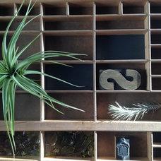 salvage print drawer plant holder