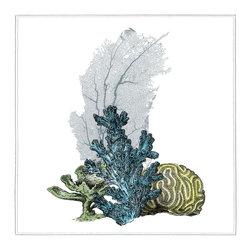 Coral beauty II Artwork - 30 x 30 Coral beauty II