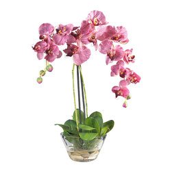 Nearly Natural - Phalaenopsis with Glass Vase Silk Flower Arrangement - Standing twenty inches high, this grand member of the orchid family is sure to make a spectacular impression. A mix of brightly hued petals graced by two delicate buds add a simple yet elegant touch. Perfect for a dining room centerpiece, this attractive Phalaenopsis arrangement is adorned by lush green leaves. A delicate round glass vase adds the perfect finishing touch to this floral masterpiece. Colors: Purple; Pot Size: W: 6.25 in, H: 6.25 in. Height: 18 in; Width: 16 in; Depth: 7 in.