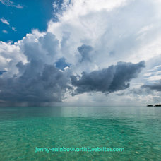 Tropical Artwork by Jenny Rainbow Fine Art Photography