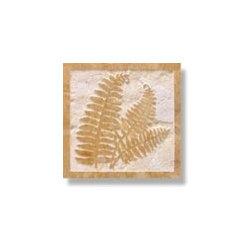 Ferns - Design: Ferns