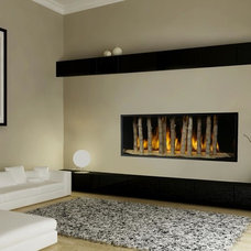 Modern Fireplaces by Travis Industries, Inc.