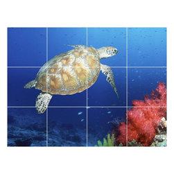 Picture-Tiles, LLC - Turtle Picture Kitchen Bathroom Ceramic Tile Mural  12.75 x 17 - * Turtle Picture Kitchen Bathroom Ceramic Tile Mural 1991