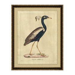 Frontgate - Ontarde Orcillard - Print has deckled edge and floats on a beige mat. Elegant black frame with antique gold ornamentation. Arrives ready to hang. The Ontarde Orcillard features the proud profile of an indigo bird. A crown of long plumes impart a stately and flamboyant character.  .  .  .