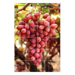 Picture-Tiles, LLC - Wine Grapes Photo Kitchen Bathroom Tile Mural  24 x 36 - * Wine Grapes Photo Kitchen Bathroom Tile Mural 1561