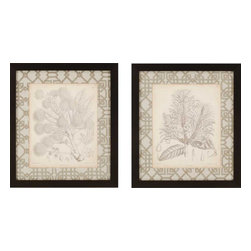 Paragon - Curtis Botanicals II PK/2 - Framed Art - Each product is custom made upon order so there might be small variations from the picture displayed. No two pieces are exactly alike.