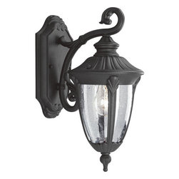 "Progress Lighting - Progress Lighting P5820-31 Meridian Single-Light Cast Aluminum Outdoor Wall - One Light Wall LanternThe Meridian collection offers a warm Golden Baroque or distinguished Black finish. Wall mounted fixtures showcase acanthus cast arms, while decorative shepherd hooks connect the hanging lanterns. The post lanterns display beautiful finials, and clear seeded glass urns emphasize the stylized framesExtends: 9-5/8"", height from center of junction box: 5-1/2""1 100w max Medium Base Bulb (not included)"