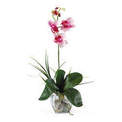 Nearly Natural - Mini Phalaenopsis Liquid Illusion Silk Orchid Arrangement - What a find! Expertly designed, our 20 inches Mini Phalaenopsis Liquid Illusion silk arrangement will be a treasured possession for years. It highlights a stem of full-blooming silk Phalaenopsis orchids and buds, foliage, and roots, with grass accents. This exquisite silk plant is presented in a glass vase with river rocks and artificial water.