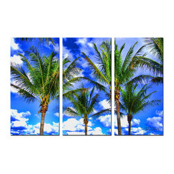 Ready2HangArt - Ready2hangart 'Shady Palms' 3-piece Canvas Wall Art - The 'Shady Palms' 3-piece canvas art set depicts palms in a blue sky with brushes of white clouds. This canvas features a tropical theme and is gallery-wrapped canvas for a contemporary look.
