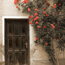 Rustic Entry Door - Rustic Door from Germany. Solid wood, historical reproductions, specializing in European style.