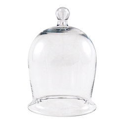 Achla - Miniature Bell Jar II - A miniature version of a classic design. Cloches of glass or earthen ware were essential to protect young plants during colonial times. Nowadays they serve as cersatile accent pieces either indoors or outdoors. They make excellent mini gardens or showcase a favorite collection. Easy to change seasonally or as a whim requires.. Clear glass. 5.375 in. D x 5.375 in. W x 8 in. H