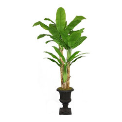 Laura Ashley - 86 in. Tall Banana Tree with Real Touch Leaves-16 in. Planter - Beautiful lifelike Banana tree with Real Touch leaves in a Fiberstone planter. No need to shop for a planter separately - comes complete with decorative planter. Artificial plants let you decorate without concern for water damage, trimming, or soil.. 48 in. L x 48 in. W x 85.5 in. H (20.6 lbs.)