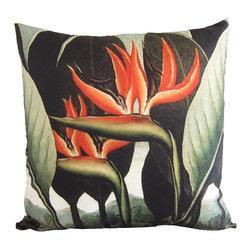 "Poetic Pillow - Bird of Paradise Pillow - Robert John Thornton, Poetic Pillow - • 20"" X 20"" square pillow"