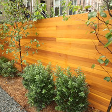 Contemporary Landscape by New Eco Landscapes