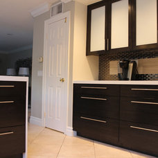 Contemporary Kitchen Cabinetry by Laguna Bamboo