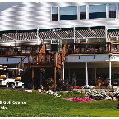 Greenbriar - Made of handsome, yet rugged poly-vinyl, it's virtually maintenance free. Though it looks like painted wood, there's no painting, scraping, sanding, or staining ... ever! The ShadeTree® canopies ride smoothly overhead in special tracks that are formed into both sides of the vinyl beams.