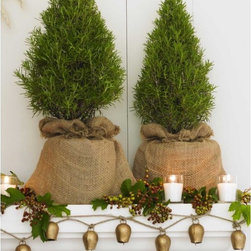 Rosemary Topiary - Piney and herbaceous, fresh rosemary has a scent that I love, and this must be the most creative way of incorporating it as decor. I'd also totally use these to cook with throughout the holidays.