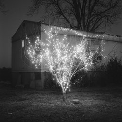 OAC Gallery - Christmas Tree - Limited Edition Photography by Brandon Thibodeaux - Christmas lights glow on a crisp, wintery night in Alligator, Mississippi. This is from a series called, When Morning Comes, which is a reflection of life on the Mississippi Delta.