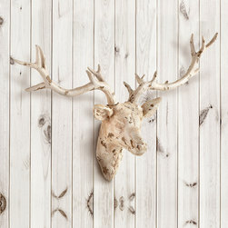 Open Antler Wall  Decor - Bring something of the forest into your home in an antique white finish that gives this decorative piece both a wonderful gravity and intriguing depth against your wall.  The Open Antler Wall D�cor captures the heirloom appeal of a hunting trophy along with the expressiveness of sculpture and a slightly modified silhouette, completed in distressed neutrals for a timeless feel.