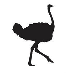 Ostrich Wall Decal - Some wall decals may come in multiple pieces due to the size of the design.